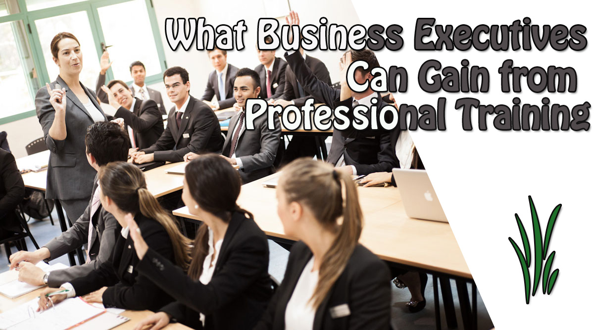 What Business Executives Can Gain from Professional Training